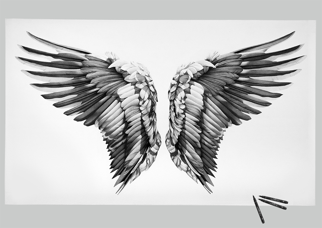 white_wings3